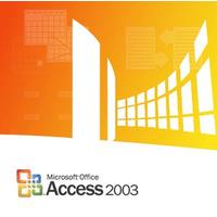 Microsoft Access 2003, x32, GOV, SA, 1u, OLP-NL Logiciel de base de données