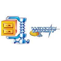 Corel WinZip 15 Standard, WIN, 200-499u, 1y, MNT Backup software