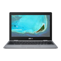 ASUS Chromebook C223NA-GJ0044-BE Laptop - Grijs