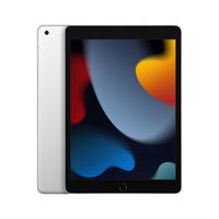 Apple iPad iPad Tablet - Zilver