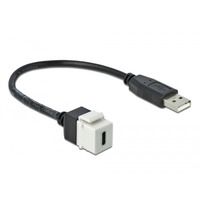 DeLOCK Module Keystone, USB 2.0 C femelle - USB 2.0 A mâle avec câble