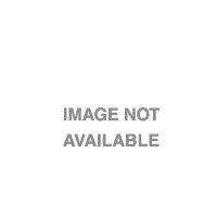 "Epson Enhanced Adhesive Synthetic Paper Roll, 24"" x 30,5 m, 135g/m² Grootformaat media"