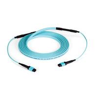 Black Box MTP OM3 Fiber Optic Trunk Cable - Plenum, 12-Strand, Type-C, 20-m Câble de fibre optique - Couleur .....