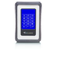DataLocker DL3 1TB Externe harde schijf - Zwart,Zilver