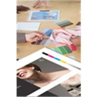 "Epson Proofing Paper White Semimatte, 13"" x 30,5 m, 250g/m² Grootformaat media"