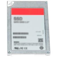 Dell Wyse 400-ALZJ SSD - Grijs