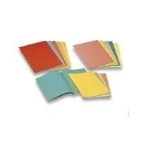 Esselte Paperboard folder 275 g/m2, Blue Fichier - Bleu
